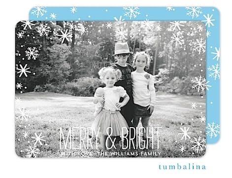 Falling Snowflakes Holiday Flat Photo Card