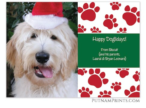 Paw Print Holiday Flat Photo Card