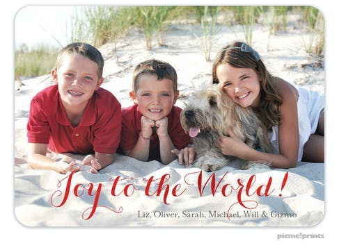The Family Photo (Horizontal) Foil Pressed Holiday Photo Card