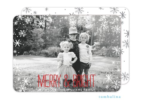 Falling Snowflakes Foil Pressed Holiday Photo Card