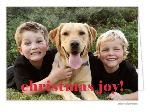 Christmas Joy! Holiday Photo Card