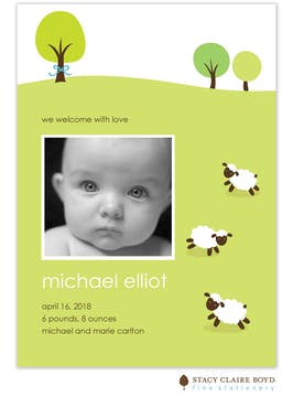 Henry's Little Lambs Boy Photo Birth Announcement