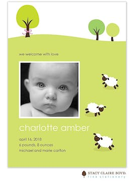 Mary's Little Lambs Girl Photo Birth Announcement