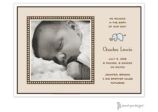 Dotted Border Latte Flat Photo Birth Announcement