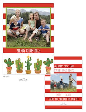 Festive Cactus Holiday Photo Card