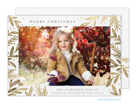 Christmas Foliage  Holiday Photo Card