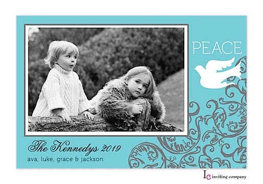 Frosty Dove Holiday Flat Photo Card