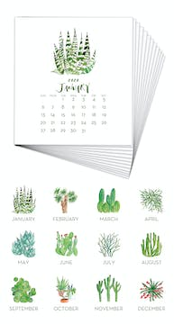 Cactus & Succulents 2020 Watercolor Desk Calendar Refill