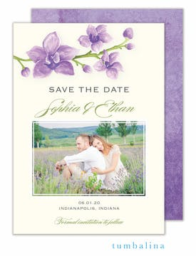 Elegant Orchids Photo Save The Date Card