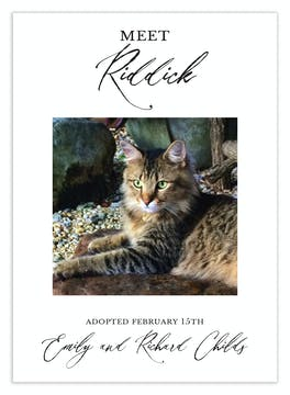 Meet the Pet Photo Announcement
