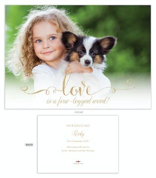 Four-Legged Word Pet Adoption Photo Announcement
