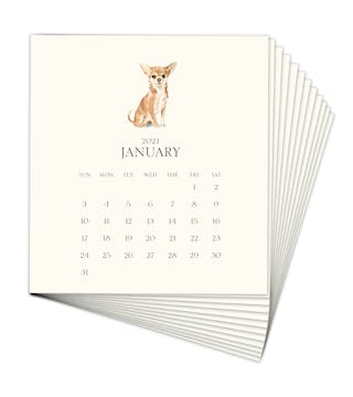Personalized Pet Calendar 2021 Desk Calendar Refill - Click Personalize to Choose from Many Dog & Cat Breeds