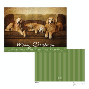 Paw Border Green Flat Holiday Photo Card