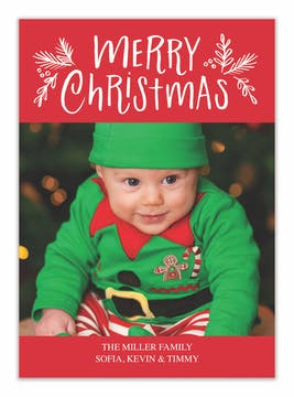 Christmas Twigs Holiday Photo Card