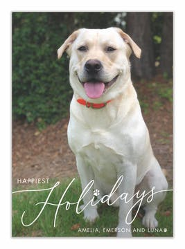 Pet Happiest Holidays Holiday Photo Card