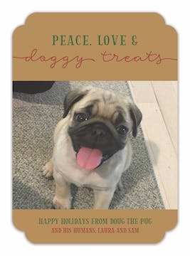 Peace Love and Doggy Treats Holiday Photo Card