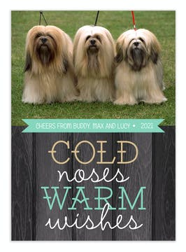 Cold Noses Warm Wishes Holiday Flat Photo Card
