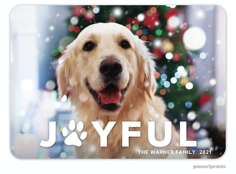 Joyful Paw Print Holiday Photo Card