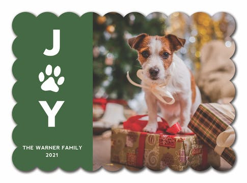 Pet Joy Holiday Photo Card