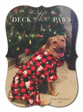 Deck the Paws Holiday