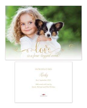 Four-Legged Word Pet Adoption Photo Announcement