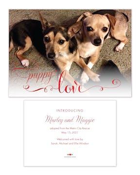 Puppy Love Pet Adoption Photo Announcement