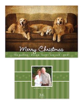 Paw Border Green Flat Holiday Photo Card
