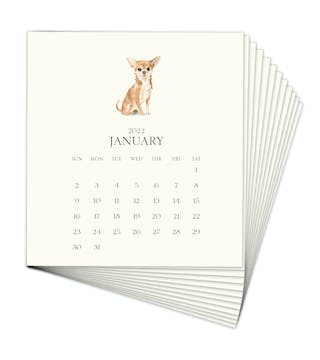 Personalized Pet Calendar 2022 Desk Calendar Refill - Click Personalize to Choose from Many Dog & Cat Breeds