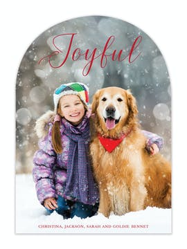 Arch Shape Joyful Holiday Photo Card
