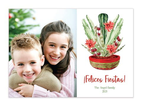 Felices Fiestas Holiday Photo Card