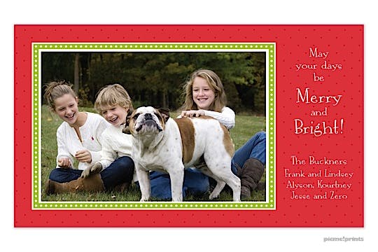 Christmas dots & more dots poppy Holiday Flat Photo Card