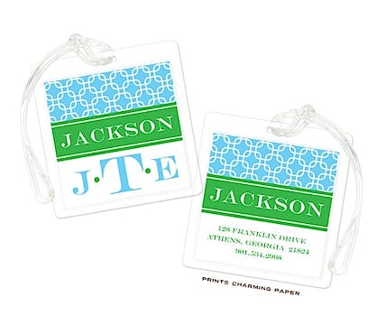 Aqua & Green Stylish Chain Flat Luggage Tag