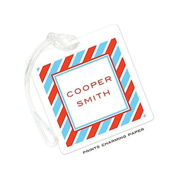Aqua & Red Diagonal Stripe Flat Luggage Tag