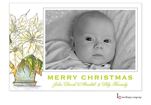 Light Poinsettia Holiday Flat Photo Card