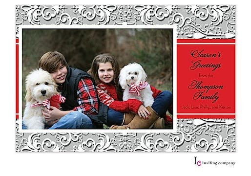 Organza Snow Holiday Flat Photo Card