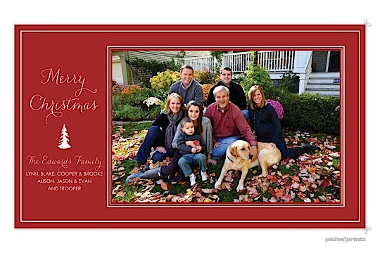 Fir Tree Crimson Holiday Flat Photo Card