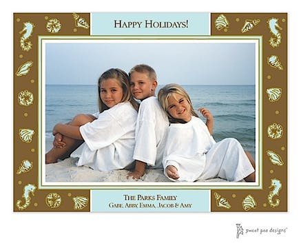 Beach Aqua & Chocolate Holiday Print & Apply Flat Photo Card
