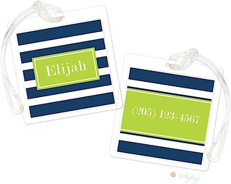 Lime Blue Stripes ID Tags